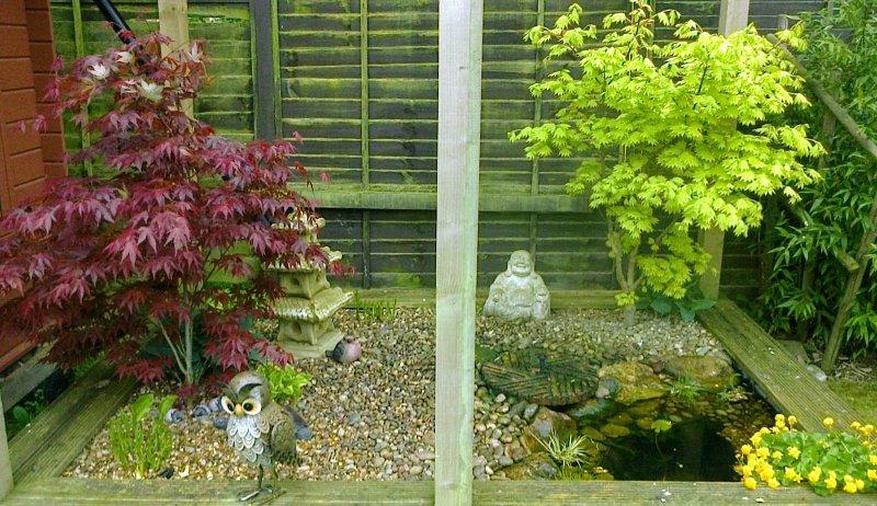 AJT and Sons Garden Maintenance